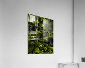 The Tender Matter  Acrylic Print