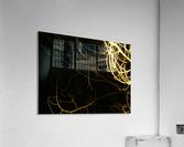 A (11)  Acrylic Print