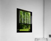 sofn-0E9AC9CD  Acrylic Print