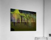 sofn-81E772CE  Acrylic Print