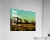 sofn-840D8D25  Acrylic Print