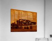 sofn-5D9BE0B7  Acrylic Print