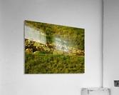 sofn-58FD2433  Acrylic Print