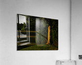 sofn-3048EECD  Acrylic Print