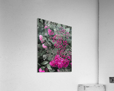 Collection Vinyasa .3   Impression acrylique