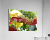 Garden Flowers Art Photograph  Acrylic Print