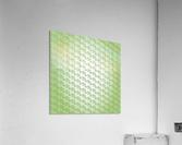Design Art  Acrylic Print