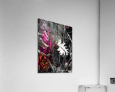 Puja   Impression acrylique