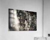 Eyes of the Leopard  Acrylic Print