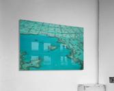 Love Reef  Acrylic Print