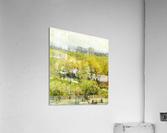 Woodland Pond  Acrylic Print