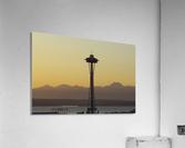 needle  Acrylic Print