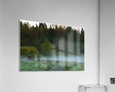 Weyerhaeuser morning  Acrylic Print