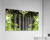 1538532615864  Acrylic Print