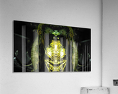 1538543976420  Acrylic Print