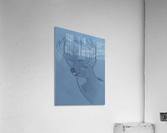 Maine Deer  Acrylic Print