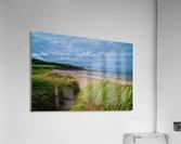Sand and Grass  Acrylic Print