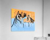 Horses.Davey K.  Acrylic Print