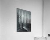 Hint of Sunlight  Acrylic Print