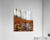 Puddle  Acrylic Print