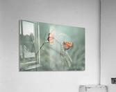 With You  Acrylic Print