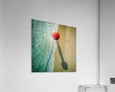 . deep water .  Acrylic Print