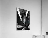 Fine Art  Acrylic Print