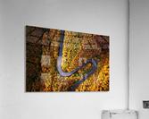 Serpentine column  Acrylic Print