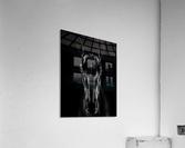 The Horse in Noir  Acrylic Print