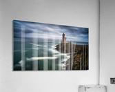 Le Minou  Acrylic Print