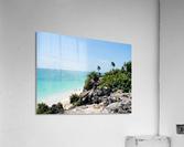 Tropical10  Acrylic Print