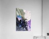 Goddess Collection  Impression acrylique