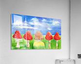 Mushroom Girl   Acrylic Print