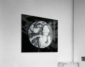 Cameo glass disc   Acrylic Print