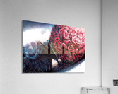 Riot by Krzysztof Grzondziel  Acrylic Print