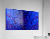 1541255268600  Acrylic Print
