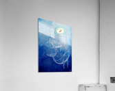 Moby Dick  Acrylic Print