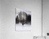 Winter fog  Impression acrylique