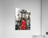 Red Door Edinburgh  Acrylic Print