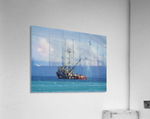 Aqua  Acrylic Print