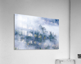 FOREST IN THE CLOUDS  Acrylic Print