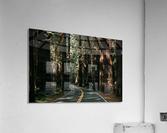 Avenue of the Giants  Impression acrylique