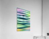 PRO. (2)  Acrylic Print