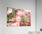 Blooms in the Garden  Acrylic Print