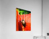 Christina Berard  Impression acrylique