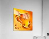 Sankhiassa - dragonfly with orange sky  Acrylic Print
