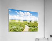 ANDALUSIA  Acrylic Print