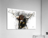 Highland Cow in Ink  Impression acrylique