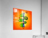 Tessanimia - colourful spring flower  Acrylic Print