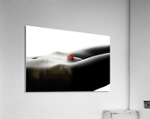 Nude bodyscape on white 1  Acrylic Print